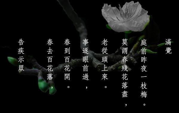Bài thơ Cáo tật thị chúng của thiền sư Mãn Giác