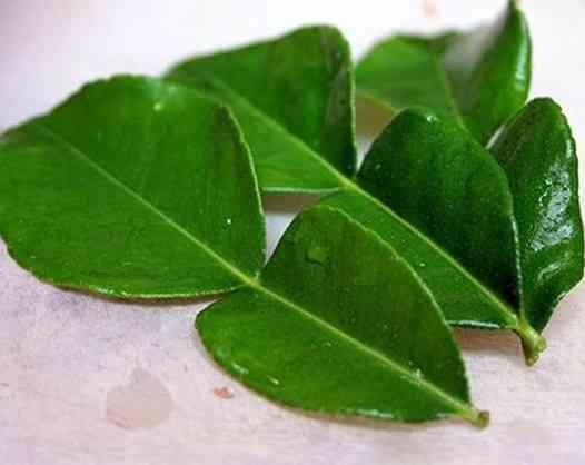 Lá bưởi và hoa bưởi trị bệnh gì? (Citrus maxima)