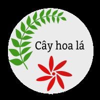 CayHoaLa.com