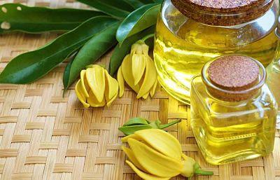 Tinh dầu hoa ngọc lan tây (Ylang Y lang)