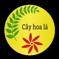 CâyHoaLá.com