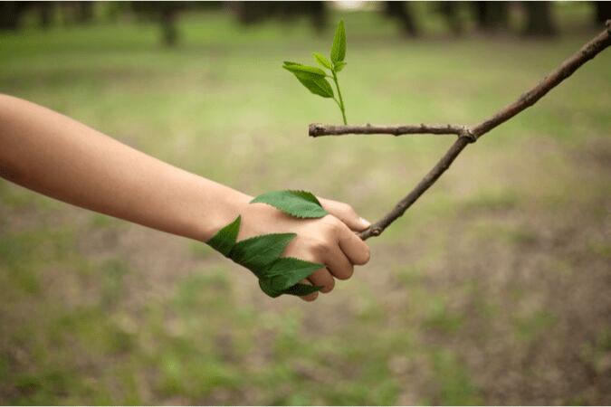 Kết nối với tự nhiên để chữa lành tổn thương