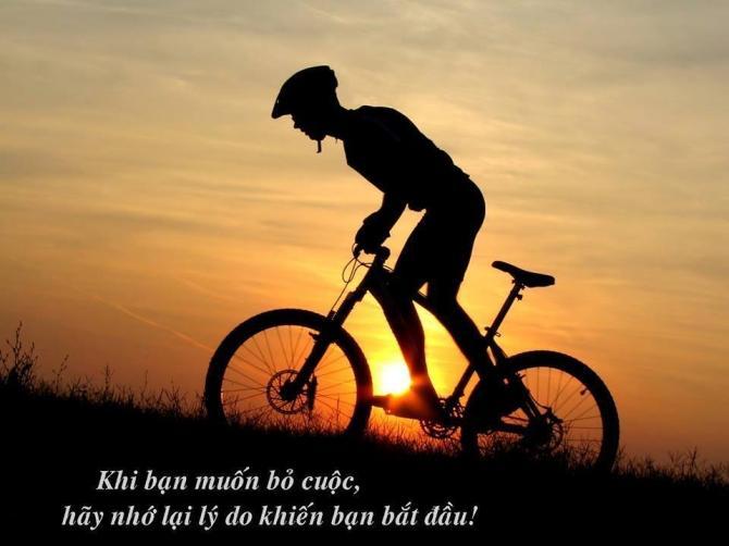 Không bỏ cuộc