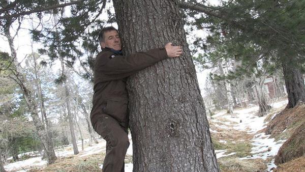 Ôm cây để vơi nỗi buồn