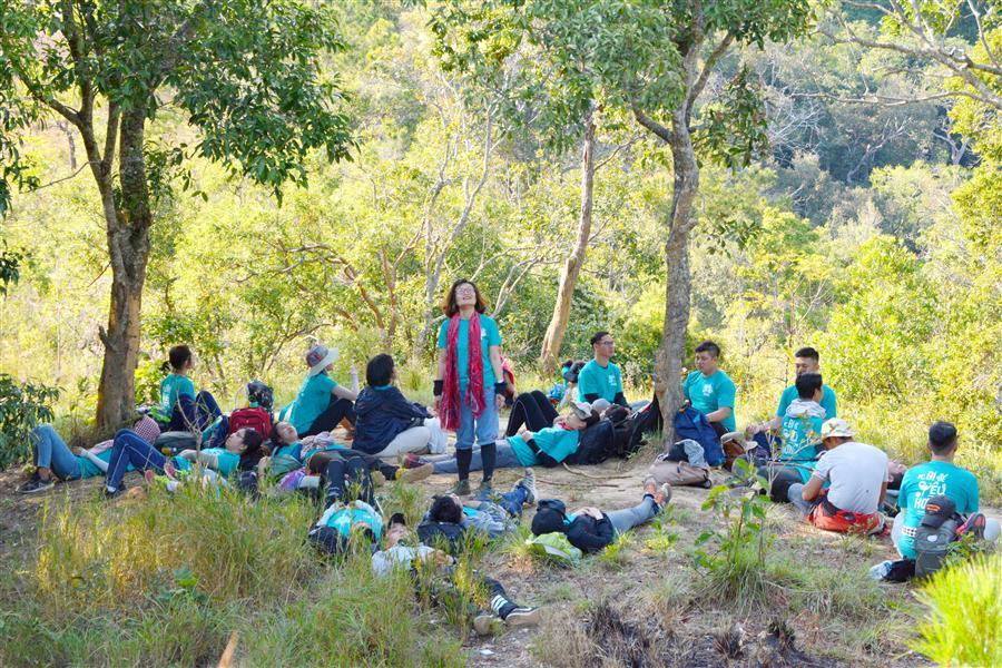 Tắm rừng - liệu pháp rừng cây